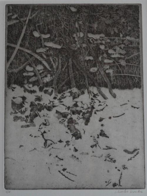 Tuin (I) Rhijnauwen