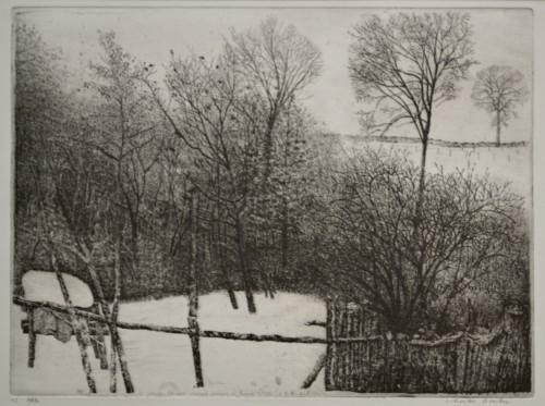 Winter in Rhijnauwen
