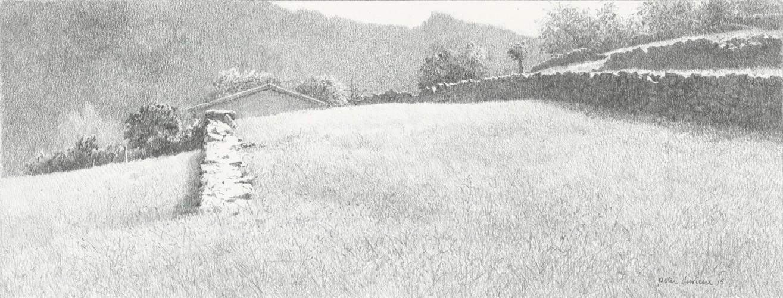 19243