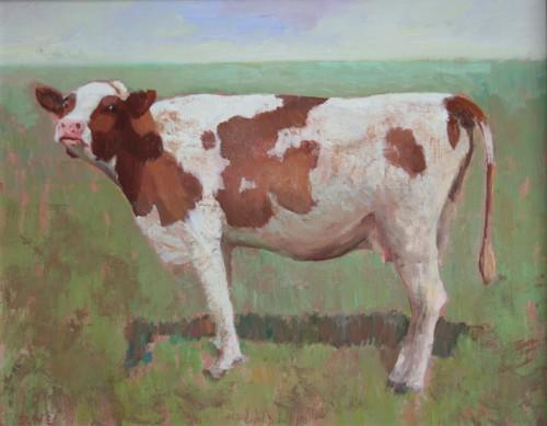 Roodbonte koe