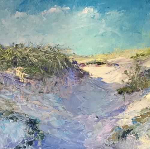 Langs strand en duinen