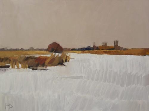 Bevroren en besneeuwde Zederik