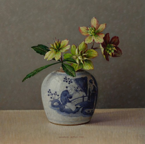 Helleborus in Chinese pot