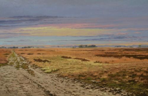 Strabrechtse Heide, een vergezicht.