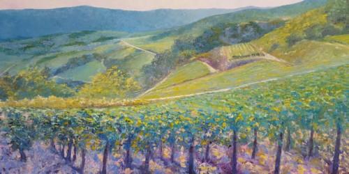 Wijngaard (optie)