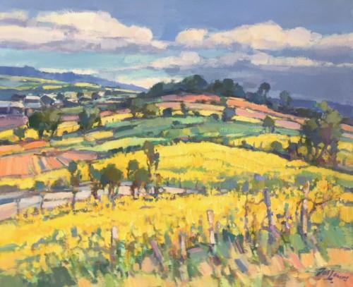Koolzaadvelden in de Bourgogne