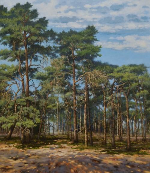 Grotels Bos II