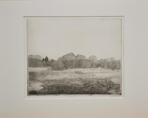 Landschap Rhijnauwen (Dinsdag)