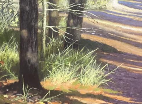 Jan Smits 50 jaar kunstenaar!