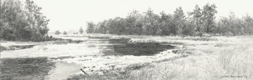 Kiezelven 1 (Strabrechtse Heide)