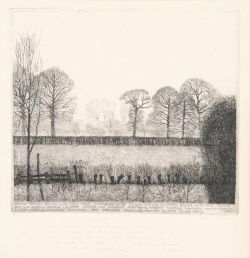 Landschap Rhijnauwen (woensdag)