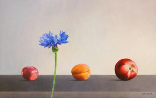 Wat fruit en een korenbloem