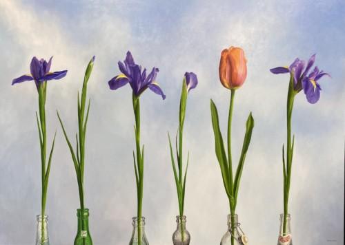 5 irissen en 1 Tulp