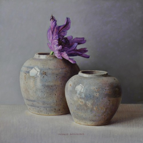 Paars- violette tulp