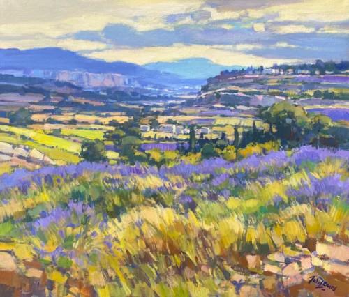 Lavendel in Vaucluse