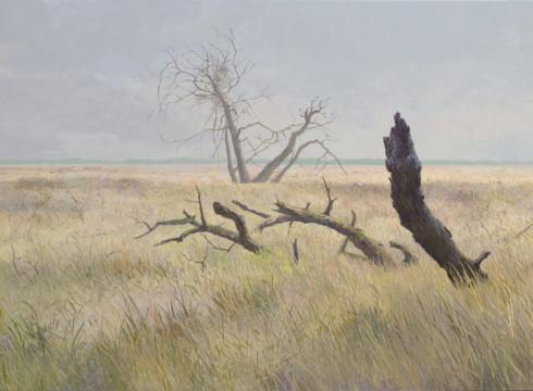 De Strabrechtse Heide geschilderd door Peter Durieux