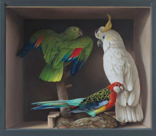 Drie vogels