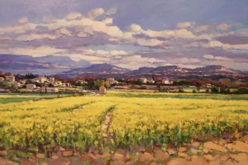 Koolzaadvelden bij Roussillo