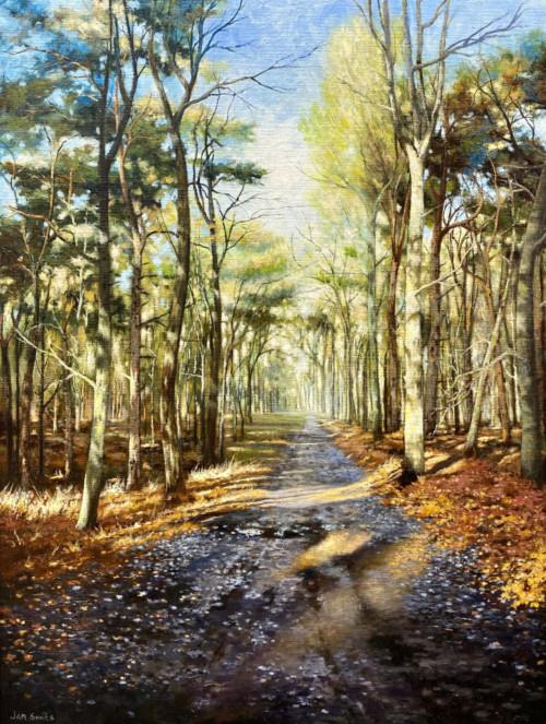 Herfstlicht in de Bossen (Bos in Stiphout)